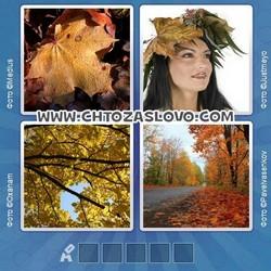 Ответ на уровень 66: осень