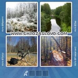 Ответ на уровень 91: лес