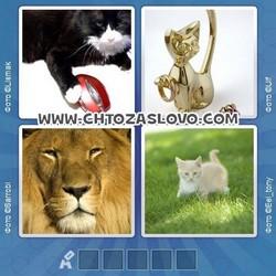 Ответ на уровень 96: кошка