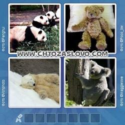 Ответ на уровень 106: медведь