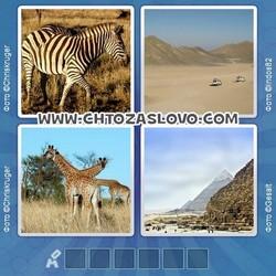 Ответ на уровень 211: Африка