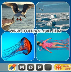 Ответ: море