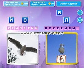 Ответ: крылатый - бескрылый