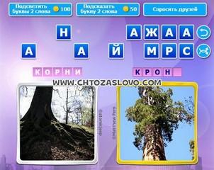Ответ: корни - крона