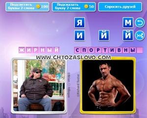 Ответ: жирный - спортивный