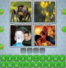Ответ: паук