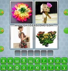 Ответ: цветок