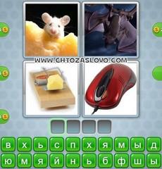 Ответ: мышь