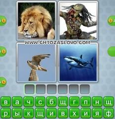 Ответ: хищник