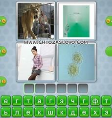 Ответ: клетка