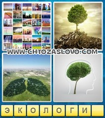 Ответ: экология