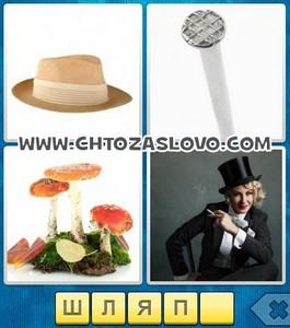 Ответ: шляпа