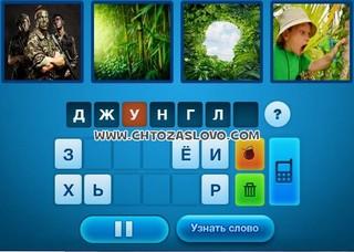 Ответ: джунгли