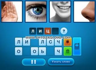 Ответ: лицо