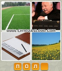 Ответ: поле