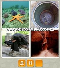 Ответ: дно