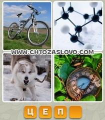 Ответ: цепь
