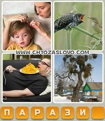 Ответ: паразит