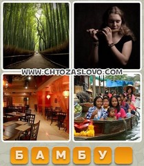 Ответ: бамбук