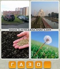Ответ: газон