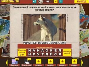 Ответ: Лайка
