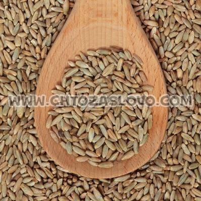 Ответ: зерно