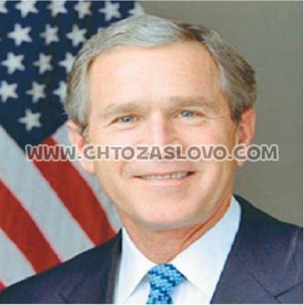 Ответ:  Буш