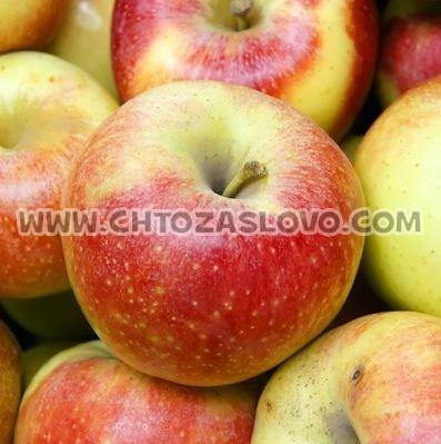 Ответ: яблоко