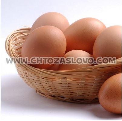 Ответ: яйцо