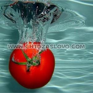 Ответ: помидор